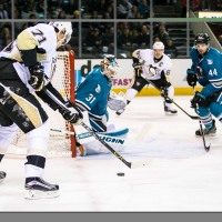 Penguins and Sharks Advance to the Stanley Cup Finals: the Road Ahead